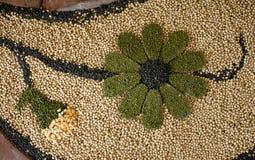 Semilla en forma de la flor Imágenes de archivo libres de regalías