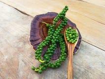 Semilla fresca de la pimienta verde de la pimienta negra foto de archivo libre de regalías