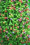 Semillas coloridas de la palma de espina de pescado Foto de archivo