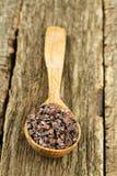 Semillas de cacao Imagenes de archivo