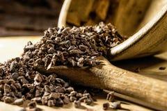 Semillas de cacao Fotos de archivo