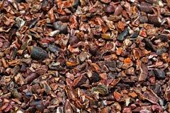 Semillas de cacao orgánicas Imagenes de archivo