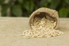 Semillas de calabaza en bolso de la arpillera Foto de archivo