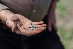Semillas de calabaza en la palma de un hombre Fotos de archivo