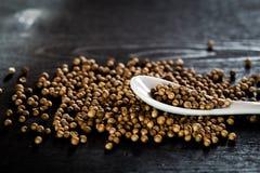 Semillas de coriandro Foto de archivo