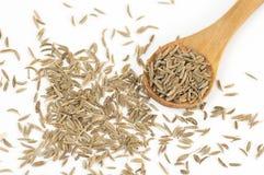 Semillas de la alcaravea (carvi del Carum) Foto de archivo libre de regalías