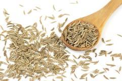 Semillas de la alcaravea (carvi del Carum) Fotografía de archivo libre de regalías