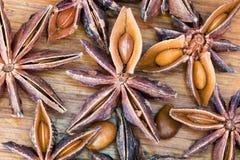 Semillas de la estrella del árbol de anís Fotos de archivo