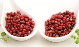 Semillas de la pimienta roja Foto de archivo libre de regalías