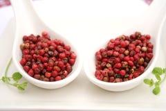 Semillas de la pimienta roja Fotos de archivo