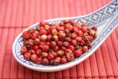 Semillas de la pimienta roja Fotos de archivo libres de regalías