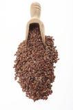 Semillas de lino con una pequeña cuchara de madera Foto de archivo libre de regalías