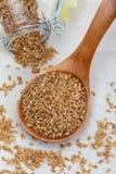 Semillas de lino de oro Microalimento beneficioso para el organismo que previene y cura dolencias Ricos en fibra y alimentos imagen de archivo