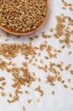 Semillas de lino de oro Microalimento beneficioso para el organismo que previene y cura dolencias fotos de archivo