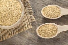 Semillas del amaranto - amaranto Imagen de archivo