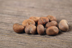 Semillas del baobab Imagen de archivo libre de regalías