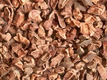 Semillas del cacao Imagen de archivo libre de regalías