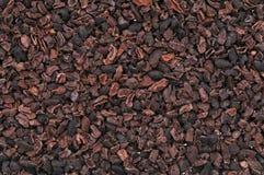 Semillas del cacao Fotografía de archivo libre de regalías