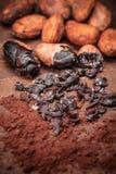 Semillas del cacao Fotos de archivo