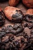 Semillas del cacao Imagen de archivo
