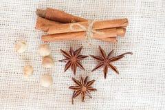 Semillas del cardamon de los palillos de canela del anís de estrella Fotos de archivo libres de regalías