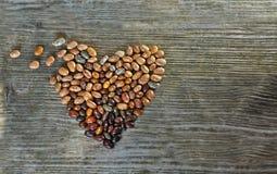 Semillas del corazón de las formas de las habas Fotos de archivo