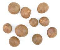 Semillas del sinensis de la camelia del té aisladas en blanco Fotos de archivo