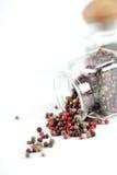 Semillas mezcladas de la pimienta del verde negro rojo de los diversos colores Fotos de archivo libres de regalías