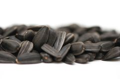 Semillas negras en un blanco Imagen de archivo