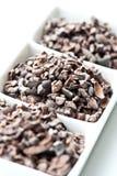 Semillas sin procesar del cacao Fotos de archivo libres de regalías