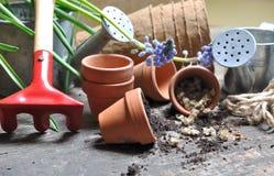 Semillas y accesorios del jardín Imagen de archivo