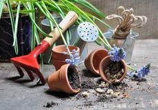 Semillas y accesorios del jardín Imágenes de archivo libres de regalías