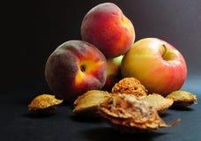 Semillas y frutas Fotos de archivo