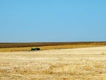 Semina del campo nei toni marroni con l'orizzonte blu Immagini Stock