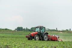 Semina dell'agricoltore, seminante i raccolti al campo Fotografia Stock Libera da Diritti