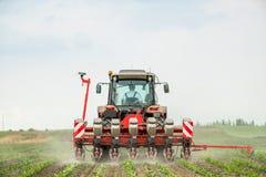 Semina dell'agricoltore, seminante i raccolti al campo Fotografie Stock Libere da Diritti