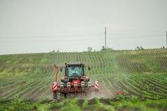 Semina dell'agricoltore, seminante i raccolti al campo Immagini Stock