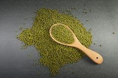 Semina i fagioli verdi utili per salute in cucchiai di legno su fondo grigio Fotografia Stock Libera da Diritti