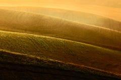 Semini il campo, i poggi marroni ondulati, il paesaggio dell'agricoltura, il tappeto della natura, Toscana, Italia Fotografia Stock