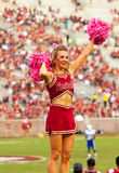 Seminoles Cheerleader. Tallahassee, FL - Oct. 27, 2012:  Florida State University cheerleader cheers with pink pom-poms to get crowd going at Seminoles college Stock Images
