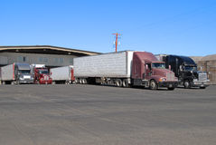 Semis at warehouse. Many trucks waiting to be loaded at fruit warehouse Royalty Free Stock Image
