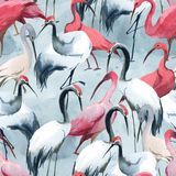 Semless pattern of storks on watercolor splash background. Watercolor illustration. Semless pattern of pink and gray storks watercolor splash background Stock Photo
