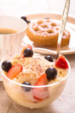 Semolina with berries. Semolina with ripe strawberries and black currant Royalty Free Stock Image