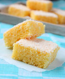 Semolina cake with coconut Royalty Free Stock Photos