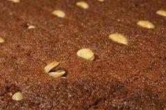 Semolina dessert. Close up shot of semolina dessert in syrup royalty free stock photo