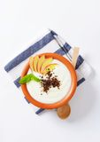 Semolina or rice pudding with apple and chocolate Royalty Free Stock Photo