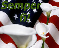 Semper fi! with calla lily and stars and stripes flag Stock Photos