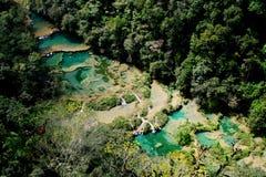Semuc Champey公园在危地马拉 库存图片