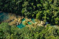 Semuc Champey自然游泳池,危地马拉 库存照片