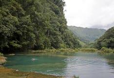 Semuc Champey en Alta Verapaz, Guatemala Photos libres de droits